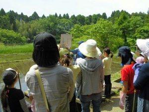 米づくり体験クラブ