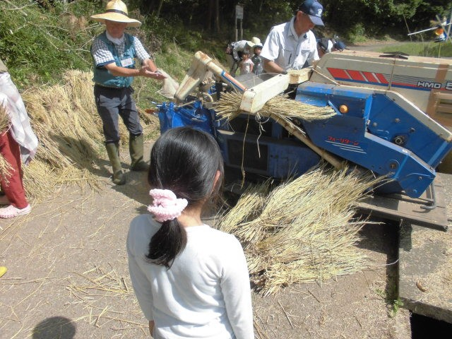 米作り体験クラブ