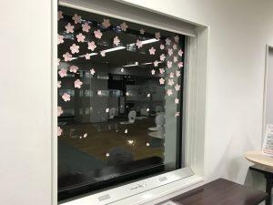 窓辺シリーズ「桜」